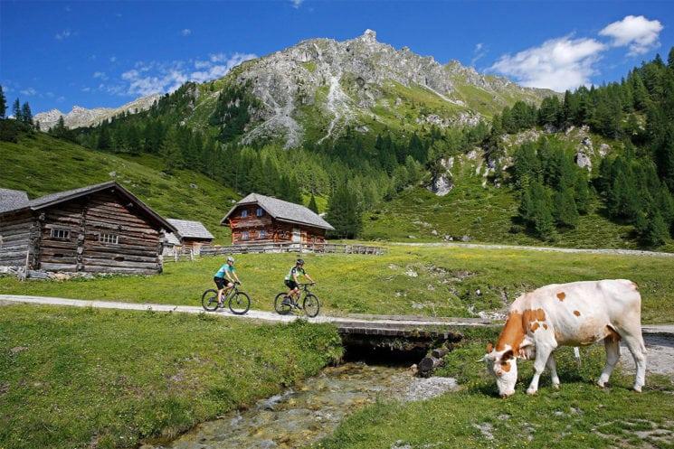 Mountainbiken - Sommerurlaub in der Region Schladming-Dachstein
